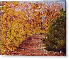 Autumn Splendor - Fall Landscape Acrylic Print by Barry Jones
