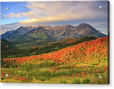 Autumn Splendor In The Wasatch Back. Acrylic Print by Johnny Adolphson
