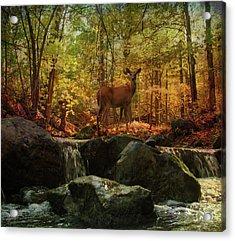 Autumn Splendor Acrylic Print by Kathleen Holley