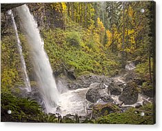 Autumn Spray Acrylic Print by Loree Johnson