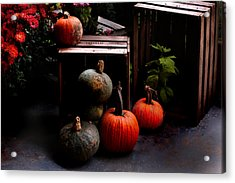 Autumn Squash Acrylic Print by Kathleen Stephens