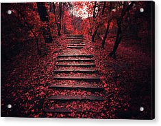 Autumn Stairs Acrylic Print by Zoltan Toth