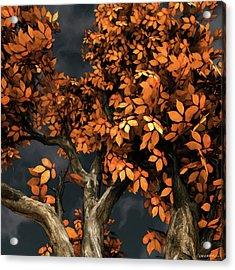 Autumn Storm Acrylic Print