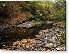 Autumn Stream Acrylic Print by James Elam