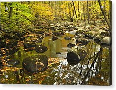 Autumn Stream Reflections Acrylic Print by Stephen  Vecchiotti