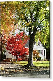 Autumn Street With Red Tree Acrylic Print by Susan Savad