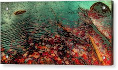 Acrylic Print featuring the photograph Autumn Submerged by David Patterson