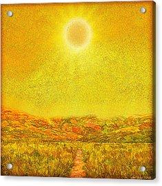Acrylic Print featuring the digital art Golden Sunlit Path - Marin California by Joel Bruce Wallach