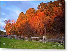 Acrylic Print featuring the photograph Autumn Sunrise At Peaks Of Otter In The Blue Ridge by Dan Carmichael