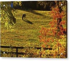 Autumn Sunset Shadows Acrylic Print by Bellesouth Studio