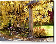 Rural Rustic Autumn Acrylic Print by Tamara Sushko