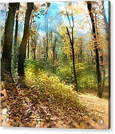 Autumn Trail Acrylic Print