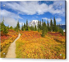 Autumn Trail Acrylic Print by Mike  Dawson