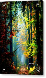 Autumn Trails In Georgia Acrylic Print