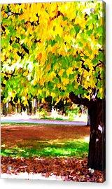 Autumn Trees 6 Acrylic Print by Lanjee Chee