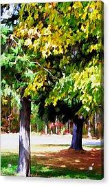 Autumn Trees 7 Acrylic Print by Lanjee Chee