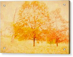 Autumn Trees Abstract Acrylic Print