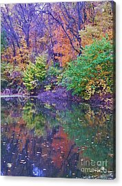 Autumn Trees And Pond Reflections  Vertical Image   Indiana Acrylic Print