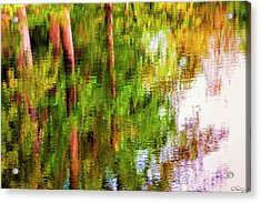 Acrylic Print featuring the photograph Autumn Trees Reflect In A Creek by Dee Browning