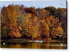 Autumn Trees Acrylic Print by Sandy Keeton