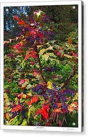Autumn Up-close Acrylic Print