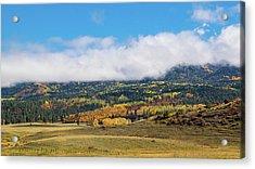 Autumn Veil Acrylic Print