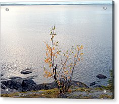 Acrylic Print featuring the photograph Autumn View 3 by Sami Tiainen
