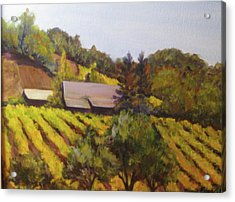 Autumn Vineyard Acrylic Print by Bonnie Rosen