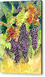 Autumn Vineyard In Its Glory - Batik Style Acrylic Print by Audrey Jeanne Roberts