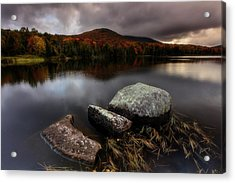Acrylic Print featuring the photograph Autumn Visit by Mike Lang