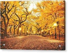 Autumn Acrylic Print by Vivienne Gucwa