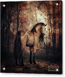 Acrylic Print featuring the digital art Autumn Walk by Shanina Conway