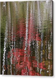 Acrylic Print featuring the photograph Autumn Water Color by Susan Capuano