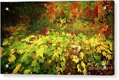 Autumn Watercolor Acrylic Print
