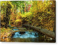 Acrylic Print featuring the photograph Autumn Waterfall by Anthony Citro