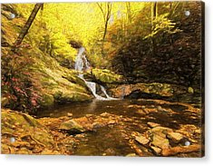 Autumn Waterfall In The Smokies Acrylic Print by Dan Sproul