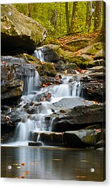 Autumn Waterfall Acrylic Print by Shelby  Young