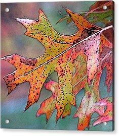 Autumn Whisper Acrylic Print by Suzy Freeborg