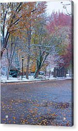 Autumn Winter Street Light Color Acrylic Print by James BO  Insogna