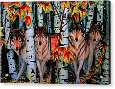 Autumn Wolves Acrylic Print
