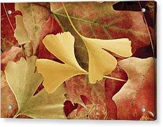 Autumn Yellow Acrylic Print