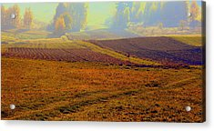 Autumnal Fogs Acrylic Print