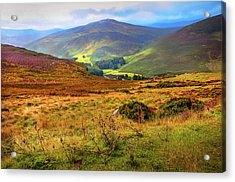 Acrylic Print featuring the photograph Autumnal Hills. Wicklow. Ireland by Jenny Rainbow