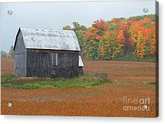 Acrylic Print featuring the photograph Autumnal.. by Nina Stavlund