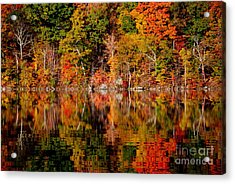 Autumnal Reflections Acrylic Print by Andrea Simon