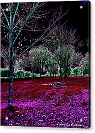 Autumnal Reversography Acrylic Print