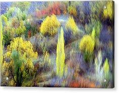 Autumnal Acrylic Print by Robert Shahbazi