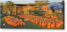 Autumnal Sunrise At Roe's Acrylic Print