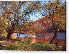 Autumnal Trees By The Lake Acrylic Print by Jenny Rainbow