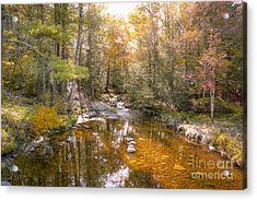 Autumn's Blessings Acrylic Print by A New Focus Photography